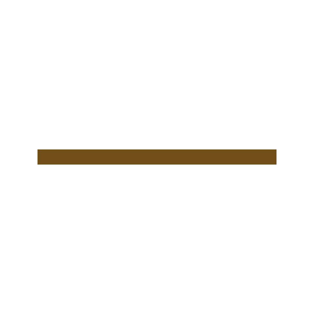 bdsapteltd_clients_logo_brown_framebyframe.png