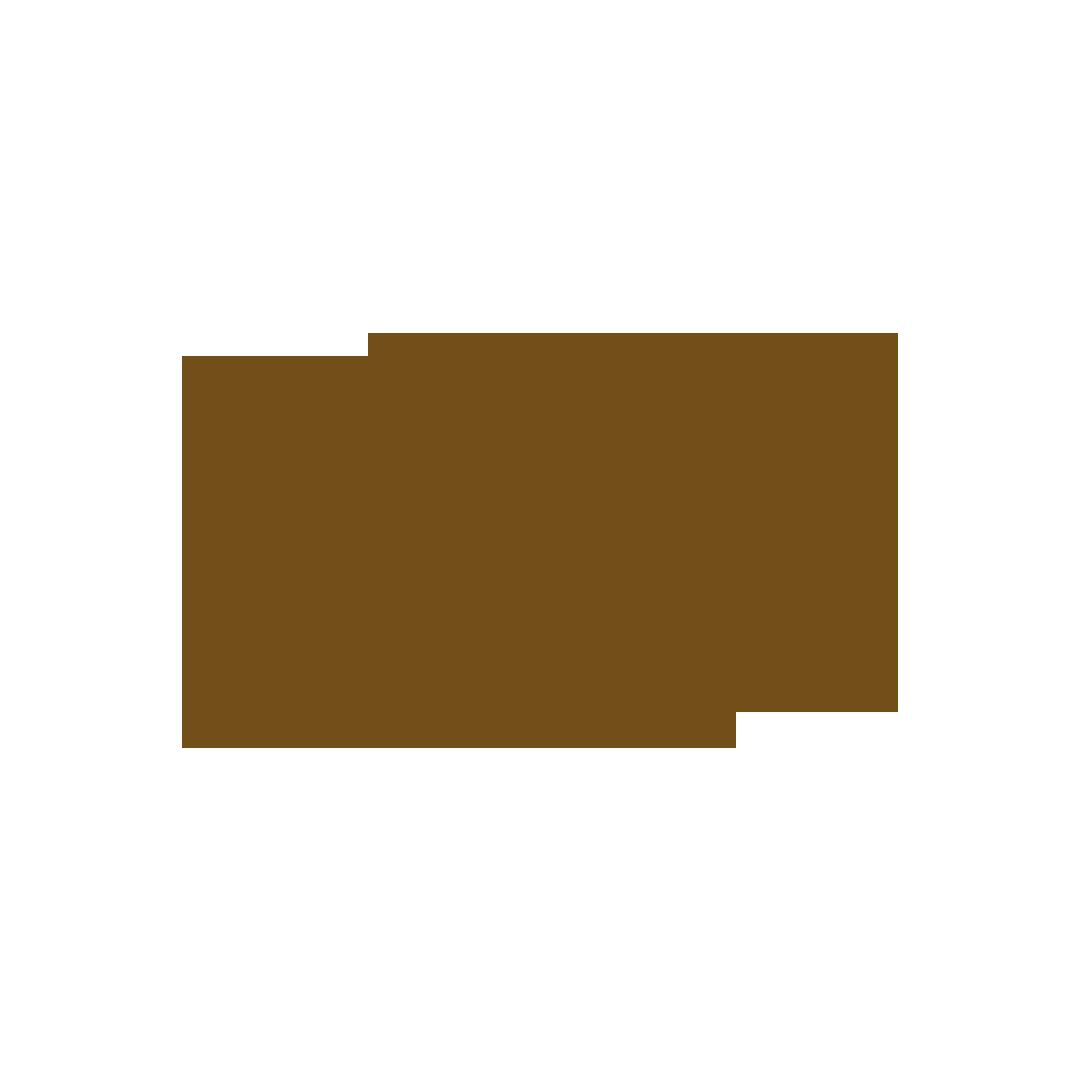 bdsapteltd_clients_logo_brown_rejuvelence.png