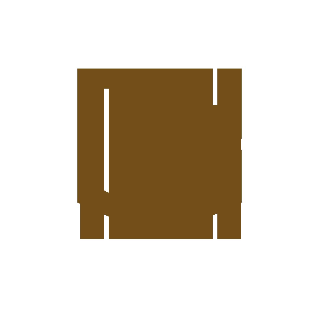 bdsapteltd_clients_logo_brown_visionengineering.png